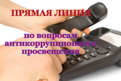 """11 декабря """"Прямая линия"""""""